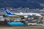 latchさんが、伊丹空港で撮影した全日空 787-8 Dreamlinerの航空フォト(写真)