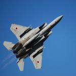 なまくら はげるさんが、入間飛行場で撮影した航空自衛隊 F-15J Eagleの航空フォト(写真)