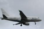 imosaさんが、羽田空港で撮影したGCLポリー・エナジー・ホールディングス A318-112 CJ Eliteの航空フォト(写真)