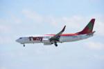 kumagorouさんが、那覇空港で撮影したティーウェイ航空 737-8BKの航空フォト(飛行機 写真・画像)