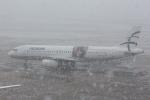 Koenig117さんが、デュッセルドルフ国際空港で撮影したエーゲ航空 A320-232の航空フォト(写真)