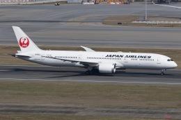 soranchuさんが、香港国際空港で撮影した日本航空 787-9の航空フォト(飛行機 写真・画像)