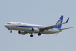 はみんぐばーどさんが、那覇空港で撮影した全日空 737-881の航空フォト(写真)