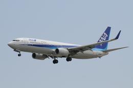 はみんぐばーどさんが、那覇空港で撮影した全日空 737-881の航空フォト(飛行機 写真・画像)