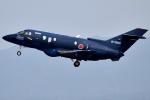 jun☆さんが、名古屋飛行場で撮影した航空自衛隊 U-125A(Hawker 800)の航空フォト(写真)