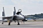 うめたろうさんが、那覇空港で撮影した航空自衛隊 F-15J Eagleの航空フォト(写真)