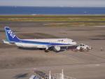 jjieさんが、羽田空港で撮影した全日空 A320-211の航空フォト(写真)