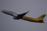 takikoki50000さんが、関西国際空港で撮影したバニラエア A320-214の航空フォト(写真)