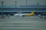 FRTさんが、関西国際空港で撮影したバニラエア A320-214の航空フォト(飛行機 写真・画像)