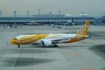 FRTさんが、関西国際空港で撮影したスクート 787-8 Dreamlinerの航空フォト(飛行機 写真・画像)