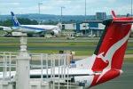 taro Tokyoさんが、シドニー国際空港で撮影した全日空 787-9の航空フォト(写真)