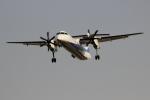 uhfxさんが、伊丹空港で撮影したANAウイングス DHC-8-402Q Dash 8の航空フォト(飛行機 写真・画像)