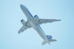 FRTさんが、関西国際空港で撮影した全日空 A320-271Nの航空フォト(写真)
