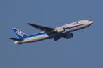 AkilaYさんが、羽田空港で撮影した全日空 777-281/ERの航空フォト(写真)