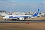 LEGACY-747さんが、伊丹空港で撮影した全日空 787-8 Dreamlinerの航空フォト(写真)