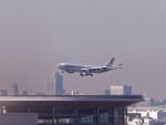 jjieさんが、羽田空港で撮影したクウェート政府 A340-542の航空フォト(写真)