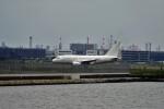 レドームさんが、羽田空港で撮影したケイマン諸島企業所有 A318-112 CJ Eliteの航空フォト(写真)