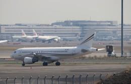 ハム太郎。さんが、羽田空港で撮影したロタナ・ジェット・アヴィエーション A319-115CJの航空フォト(飛行機 写真・画像)