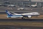 mktさんが、羽田空港で撮影した全日空 787-8 Dreamlinerの航空フォト(写真)