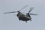 GNPさんが、那覇空港で撮影した航空自衛隊 CH-47J/LRの航空フォト(写真)