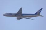 じゃりんこさんが、中部国際空港で撮影した全日空 777-281の航空フォト(写真)
