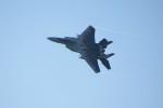 レドームさんが、新田原基地で撮影した航空自衛隊 F-15DJ Eagleの航空フォト(写真)