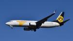 パンダさんが、成田国際空港で撮影したMIATモンゴル航空 737-8CXの航空フォト(写真)