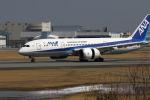 khideさんが、伊丹空港で撮影した全日空 787-8 Dreamlinerの航空フォト(写真)
