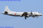 Chofu Spotter Ariaさんが、厚木飛行場で撮影した海上自衛隊 OP-3Cの航空フォト(飛行機 写真・画像)