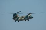 pringlesさんが、福岡空港で撮影した航空自衛隊 CH-47J/LRの航空フォト(写真)