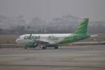 TAOTAOさんが、青島流亭国際空港で撮影したシティリンク A320-251Nの航空フォト(写真)