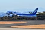 kiraboshi787さんが、広島空港で撮影した全日空 787-8 Dreamlinerの航空フォト(写真)