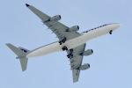 cornicheさんが、ドーハ国際空港で撮影したカタールアミリフライト A340-541の航空フォト(飛行機 写真・画像)
