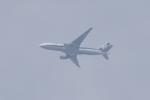 多楽さんが、羽田空港で撮影した全日空 777-281の航空フォト(写真)
