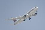 cornicheさんが、ドーハ国際空港で撮影したカタール航空 787-8 Dreamlinerの航空フォト(飛行機 写真・画像)