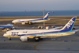 Parsleyさんが、羽田空港で撮影した全日空 787-8 Dreamlinerの航空フォト(飛行機 写真・画像)