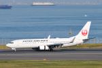 panchiさんが、羽田空港で撮影した日本航空 737-846の航空フォト(写真)
