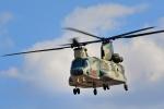 Peko mamaさんが、入間飛行場で撮影した航空自衛隊 CH-47J/LRの航空フォト(写真)