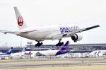 もりやんさんが、成田国際空港で撮影した日本航空 777-246/ERの航空フォト(写真)