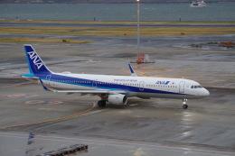 Parsleyさんが、羽田空港で撮影した全日空 A321-211の航空フォト(飛行機 写真・画像)