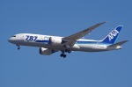 SOMAさんが、成田国際空港で撮影した全日空 787-8 Dreamlinerの航空フォト(写真)