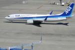 767さんが、中部国際空港で撮影した全日空 737-881の航空フォト(写真)