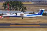 PASSENGERさんが、仙台空港で撮影したANAウイングス DHC-8-402Q Dash 8の航空フォト(写真)