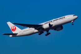 蒼  羽さんが、羽田空港で撮影した日本航空 777-246/ERの航空フォト(写真)