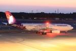 たっくさんが、成田国際空港で撮影したハワイアン航空 A330-243の航空フォト(写真)