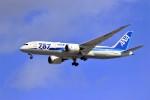 hidetsuguさんが、新千歳空港で撮影した全日空 787-8 Dreamlinerの航空フォト(写真)
