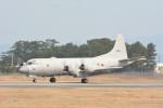 MiYABiさんが、徳島空港で撮影した海上自衛隊 P-3Cの航空フォト(写真)