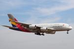 セブンさんが、成田国際空港で撮影したアシアナ航空 A380-841の航空フォト(飛行機 写真・画像)