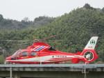 ランチパッドさんが、静岡ヘリポートで撮影した千葉市消防航空隊 AS365N3 Dauphin 2の航空フォト(写真)