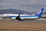 takikoki50000さんが、伊丹空港で撮影した全日空 737-881の航空フォト(写真)